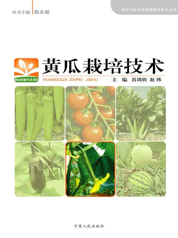 黄瓜栽培技术